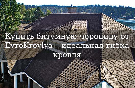Купить Битумную черепицу в Одессе, Николаеве, Херсоне по доступной цене